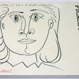 Picasso on Paper